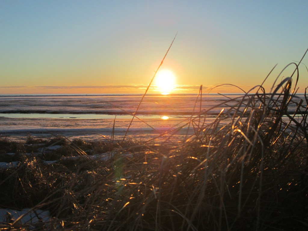 Borden Beach Sunset - Lauren MacTavish