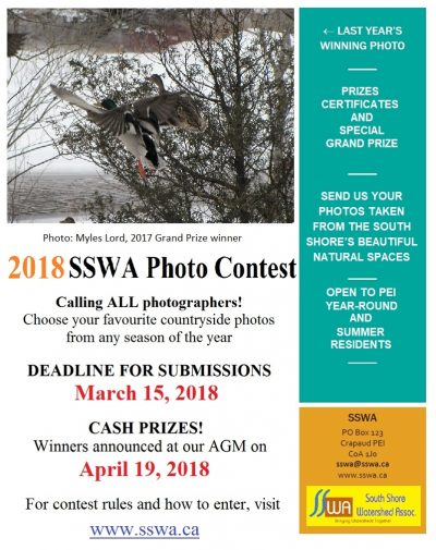 Photo Contest Opens February 15th