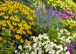 How to design a garden to attract more pollinators | Garden Gate